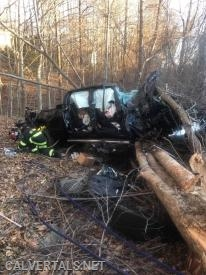 The passenger side of the vehicle in the woods.