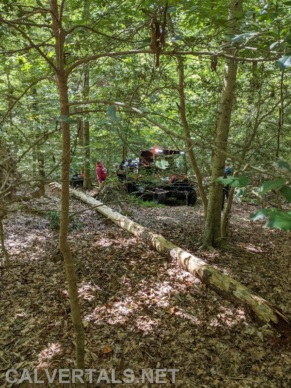 Tight spaces back in the woods where the incident occured.